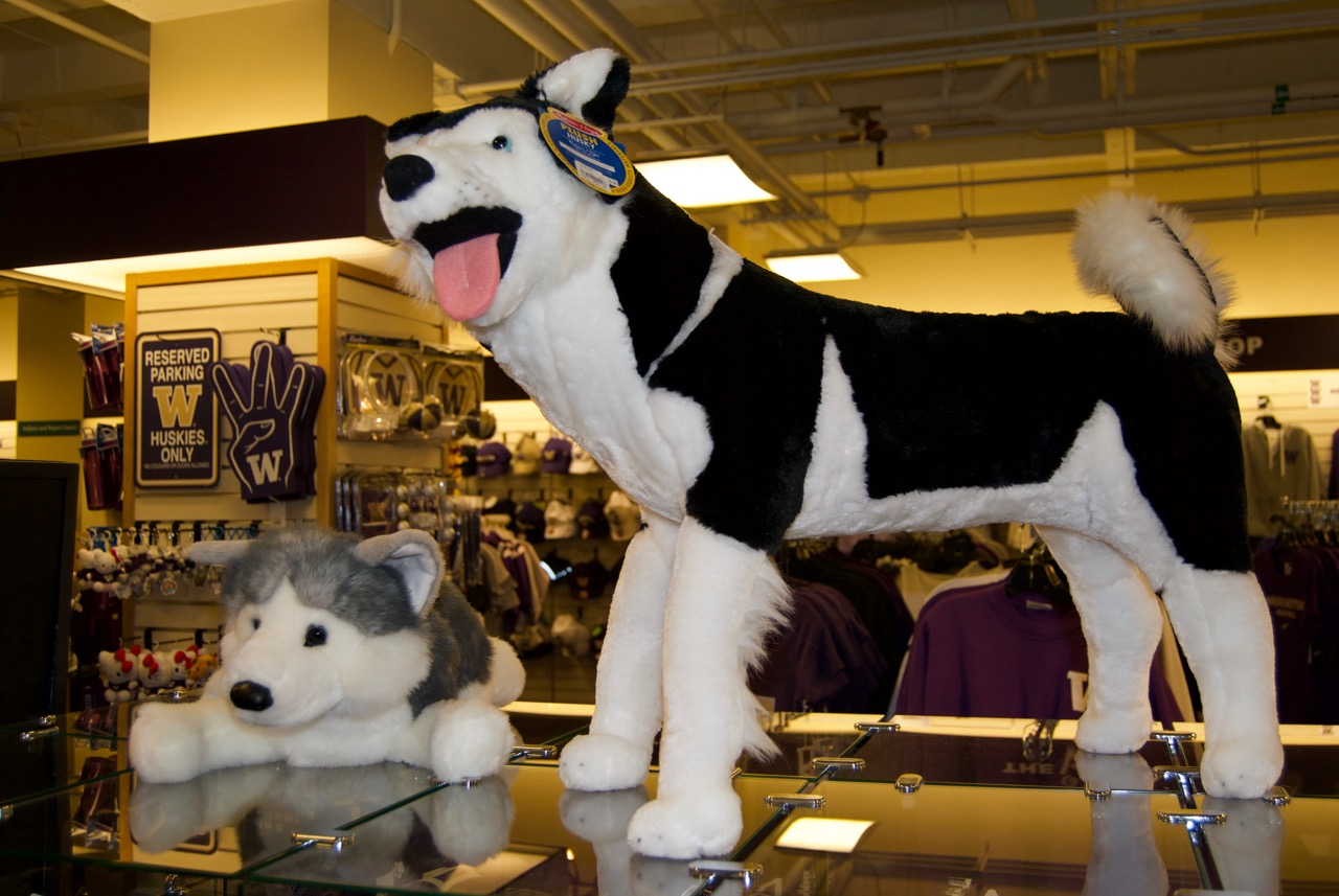 U Book Store Huskies