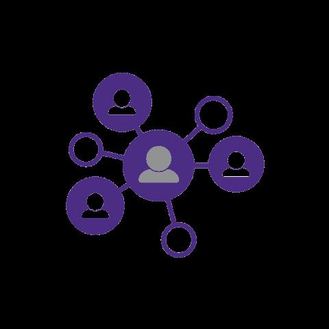 RSO networking Icon